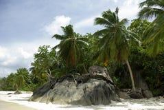 strand seychelles Arkivbild