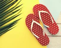 Strand-Sommerferien-Ferien Flip Flop Sandals Relaxation Conce stockfotografie