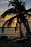Strand-Sonnenaufgang Stockfoto