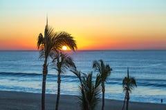 Strand-Sonnenaufgang durch die Palmen stockfotos