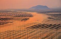 Strand-Sonnenaufgang Fujian-Xiapu, China Lizenzfreie Stockbilder