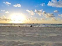 Strand-Sonnenaufgang mit Vögeln, Ozean, Sand, Himmel u. Wolken stockbilder