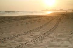 Strand-Sonnenuntergang mit Gummireifen-Spuren Lizenzfreies Stockfoto