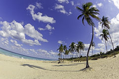 Strand am sonnigen Tag Stockfotografie