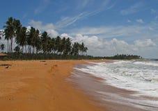 Strand in Sri Lanka Stock Afbeelding