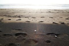 Strand Svart- och bruntsand Fotografering för Bildbyråer