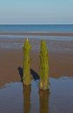 Strand-Szene, nahe Silloth, Cumbria, See-Bezirk Lizenzfreies Stockbild