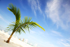 Strand szenisch lizenzfreies stockfoto