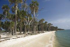 strand tahiti Arkivfoton