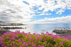 strand tenerife Fotografering för Bildbyråer