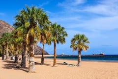 Strand Teresitas i Tenerife - kanariefågelöar Royaltyfria Foton