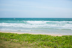 strand thailand Royaltyfria Foton