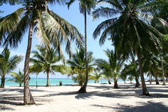 Strand in Thais eiland Royalty-vrije Stock Foto's