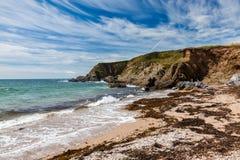 Strand Thurlestone Devon England för betesmarkfotsander Royaltyfri Foto