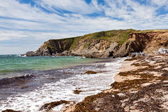 Strand Thurlestone Devon England för betesmarkfotsander Royaltyfria Bilder