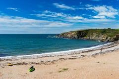 Strand Thurlestone Devon England för betesmarkfotsander Arkivfoton