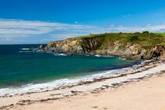 Strand Thurlestone Devon England för betesmarkfotsander Royaltyfri Bild