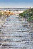 strand till den träwalkwayen Fotografering för Bildbyråer