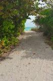 strand till långt Arkivfoton