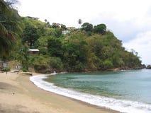 Strand in Tobago Stock Afbeelding