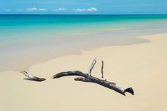 Strand tropische overzees Royalty-vrije Stock Afbeeldingen