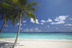 strand tropiska maldives Arkivfoto