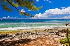 strand tropiska seychelles Arkivbilder