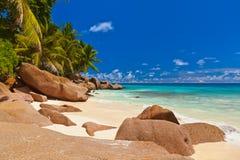 strand tropiska seychelles Royaltyfria Foton