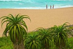 Strand in Umhlanga-Rotsen, Zuid-Afrika Stock Afbeelding