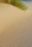 Strand- und Dünehintergrund Stockfoto