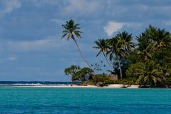 Strand und Palmen 9966 Lizenzfreies Stockfoto