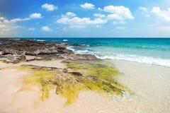 Strand und tropisches meeres- Stockbild