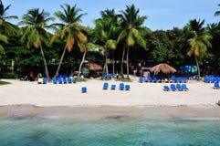 Strand unter den Palmen Stockfotografie