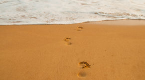 Strand, våg och fotsteg Arkivbild