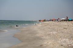 Strand in Vadu Stockfoto