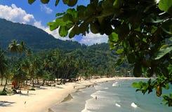 Strand van de Maracas Baai, Trinidad Stock Foto's