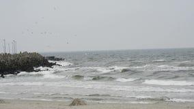 Strand van de Oostzee Stock Afbeeldingen