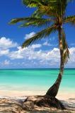 Strand van een tropisch eiland Stock Foto