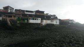 Strand van het overzeese de bosbes kustwater stock foto's