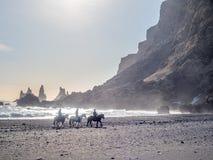 Strand van het Reynisfjara het zwarte zand in Vik, IJsland Stock Foto's