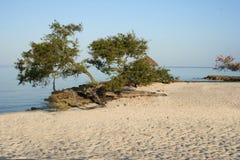 Strand van Holguin in Cuba stock fotografie