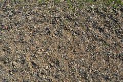 Strand van kleine kiezelstenen Stock Foto's