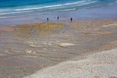 Strand van San Antolin royalty-vrije stock afbeeldingen