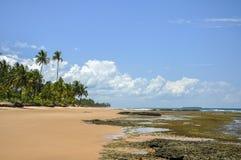 Strand van Taipu DE Fora (Bahia, Brazilië) stock afbeelding