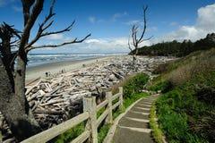 Strand van vreedzame kust stock foto