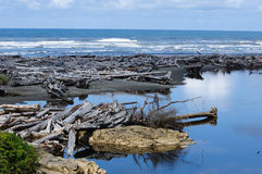 Strand van vreedzame kust stock fotografie