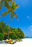 strand vita maldives Arkivbilder