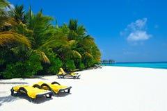 strand vita maldives Arkivbild