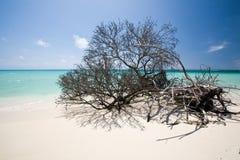 Strand von Anegada Lizenzfreie Stockbilder
