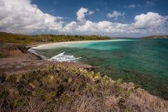 Strand von Anse Trabaud, Martinique Lizenzfreie Stockfotos